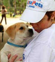 Know more about The Lost Pets Foundation